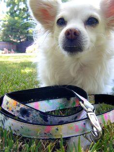 DIY Splatter Paint Dog Leash
