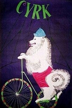 By Gustaw Majewski, 1965, Polish circus/art posters