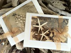 Holiday II Series Card Set by The Coastal by TheCoastalCollection
