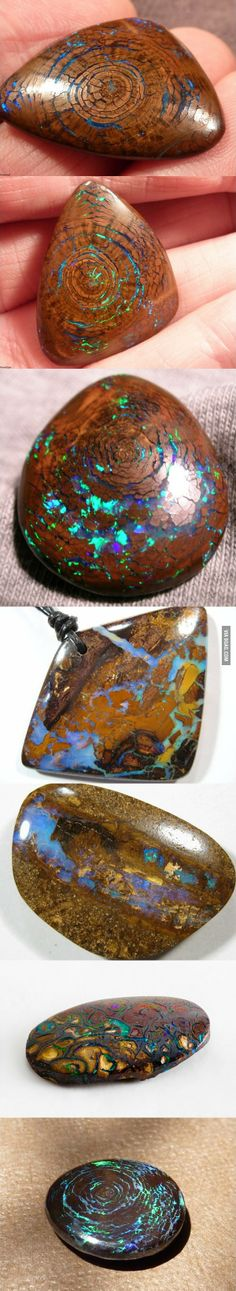 Opal Formation In Fossilized Wood