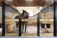 So sleek! Horse stalls by Lucas Equine.