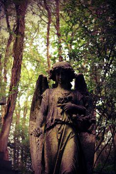 angels ... all around us