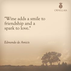 Wine adds a smile to friendship and a spark to love. ~ Edmondo de Amicis