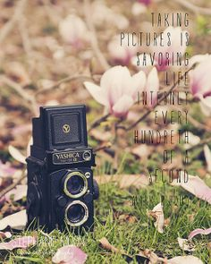 Vintage Camera Print Photography Quotes Gift for by stephaniemoon, $30.00