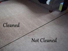 The Retro-Modern Mom: Homemade Carpet Shampoo