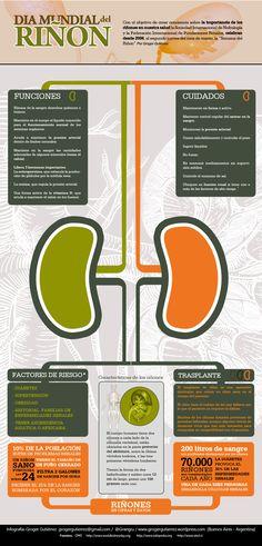 Día mundial del riñón #infografia http://www.consejosdefarmacia.com/2013/07/8-reglas-de-oro-para-proteger-nuestros-rinones.html