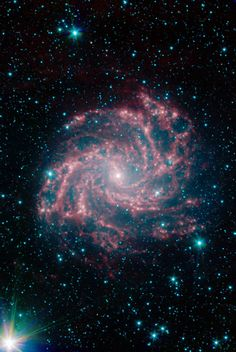 The Fireworks Galaxy (NGC 6946) - NASA Spitzer Space Telescope