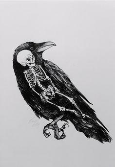 #Birds #Skeletons
