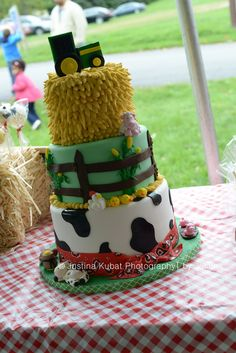 Cake at a Farm Party #farmparty #cake