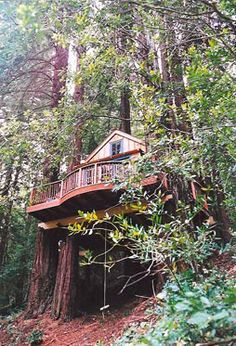 large deck treehome