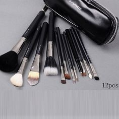 Mac Brush set $22