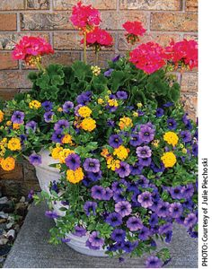 pretty container garden - flower list included.