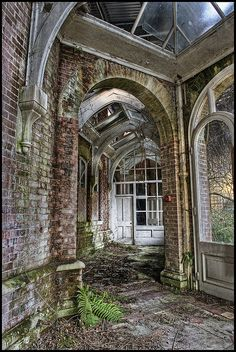 Abandoned ~ conservatory at Lillesden Girl's School