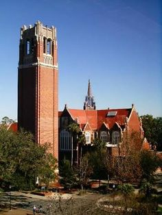 florida home, florida gators, school, towers, dream come true, centuri tower, colleg, place, university of florida