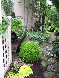 A small space side yard garden