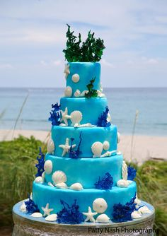Icing on the Cake | Palm Beach Illustrated cake spectacular, beach illustr, palm beach, coral cake, cake decor, beautifulscream beach, beach weddings, beach birthday