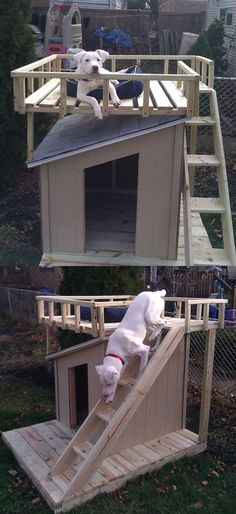 Dog House with Roof Top Deck @Lexi Lee Duarte-Massey Barquin I bet Robbie could build this!