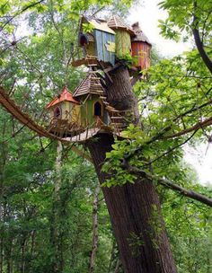 TREE HOUSE NORFOLK ENGLAND