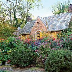 Enjoy Color All Season | Surrounded by lush beds and borders in bold hues, Cathy Adams' Birmingham garden pays homage to fall, her favorite time of year, with a landscape that dazzles. | SouthernLiving.com