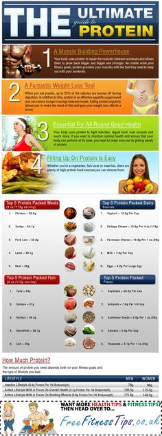 The Ultimate Guide To Protein  http://www.pinterest.com/freefitnesstips/