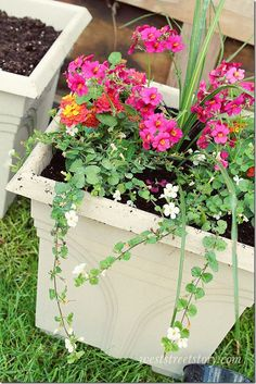 Use the thriller, spiller, filler method when planting flowers in containers