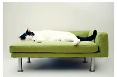 cat beds, cat furniture, pet furniture, chaise lounges, small dogs, modern pet, pet beds, lounge chairs, dog beds