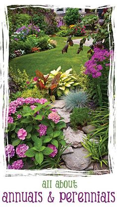 visit  http://www.squidoo.com/what-are-the-plants-peennes-of-flowerbed