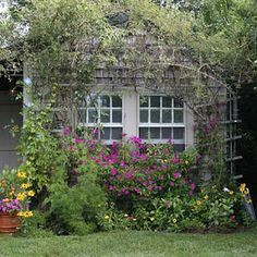 charm, dan garden, cottag garden, garden tips