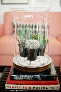 Tips on indoor gardening