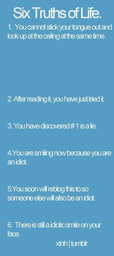 fell, laugh, stuff, funni, idiot, funny quotes, humor, true stories, thing