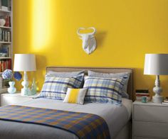 Brighten up your home with the March 2014 color of the month Pantone Freesia.  This bright yellow will add life to your home.  A vivid color such as this works well for an accent wall.  We can help you brighten up your Bellingham WA home with new paint - http://www.northpinepainting.com