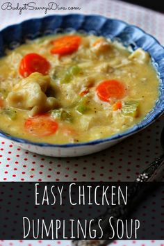 Inspired by the Chicken Dumplings Soup my great grandmother use to make. Done in 1 hour - so simple to make kids can help! Cost under $10 enough for 6 #soup #recipe #budgetsavvydiva