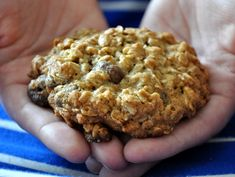 cover cranberri, oatmeal cooki