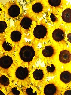 (Sun)Flower Power! #CountryChic