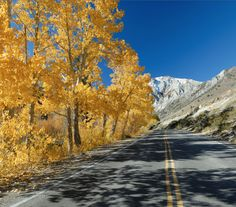 Road trip in the Eastern Sierras in California.