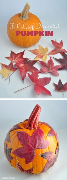 Fall Leaf Decorated Pumpkin craft idea with decoupage and multi-surface paint