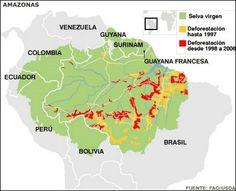 GEOGRAFIA EN ACCION: LA DEFORESTACION Y EL AMAZONAS -parte 2
