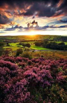Beautiful landscape from the Sun Sea and Mountains -   Norland Moor at Sunset - Halifax, England - UK