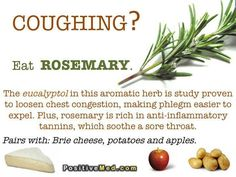 Rosemary for a cough