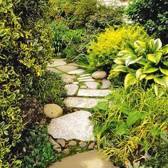 Stone walkway ideas-- love the mixture of rock types and surrounding foliage; although I would like more color surrounding.
