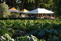 Farm-to-Table Fundraising Dinner & Silent Auction Ticket  Sylvia Bernstein and The Aquaponic Source will be hosting a special Farm-to-Table Fundraising Dinner & Silent Auction the evening of Saturday, August 9th. All proceeds from the dinner and silent auction will go toward establishing our new foundation, Grants for Plants.