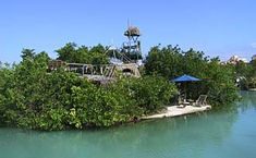 Richie Sowa built an entire floating island in a lagoon in the Yucatan. 250,000 plastic bottles and a bamboo framework provide the flotation for a 2-story house and several mini beaches shaded by mangroves. Sadly the island was destroyed by hurricane in 2005.