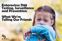 Enterovirus D68 Testing, Surveillance and Prevention: What We're Telling Our Friends | www.aphlblog.org