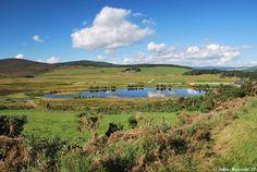Scottish Pictures