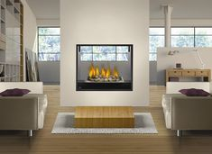 Napoleon Fireplace HD81NT See Through Modern Direct Vent Fireplace