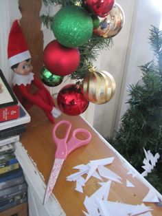 300+ Elf on the Shelf Photos