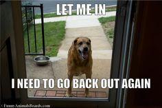 Let him in.