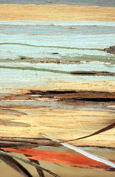 wood color palette