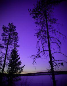 Purple sky.