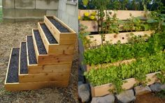 Introducing the VERTICAL CONTAINER GARDEN, specially designed for the URBAN GARDENER. This raised bed garden is made for the sole purpose of GARDENING SMALL SPACES!